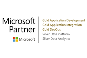 Microsoft Gold Partner Commentor