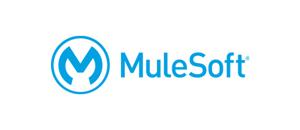 mulesoft esb partner logo